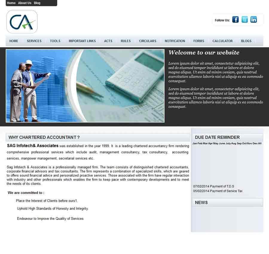 Chartered Accountant Theme16