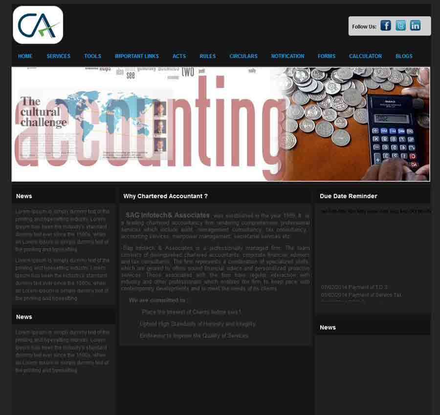 Chartered Accountant Theme19