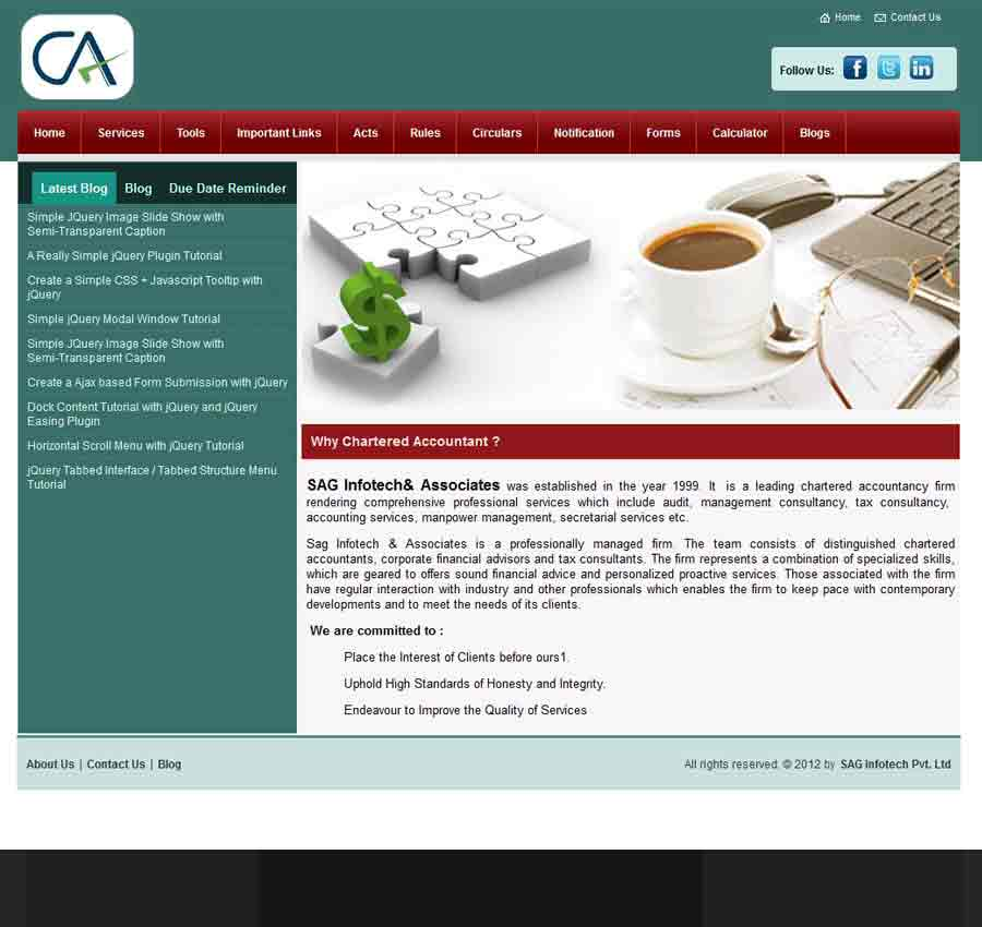 Chartered Accountant Theme20