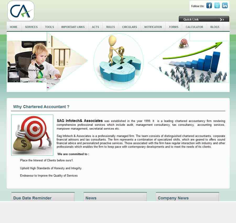 Chartered Accountant Theme21