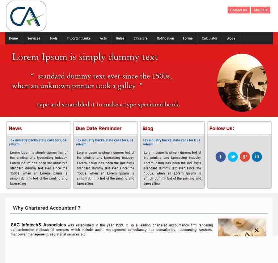 Chartered Accountant Theme22