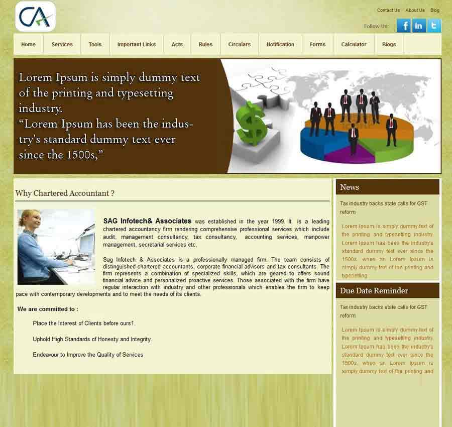 Chartered Accountant Theme25