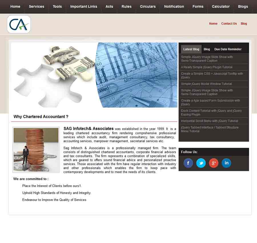Chartered Accountant Theme26