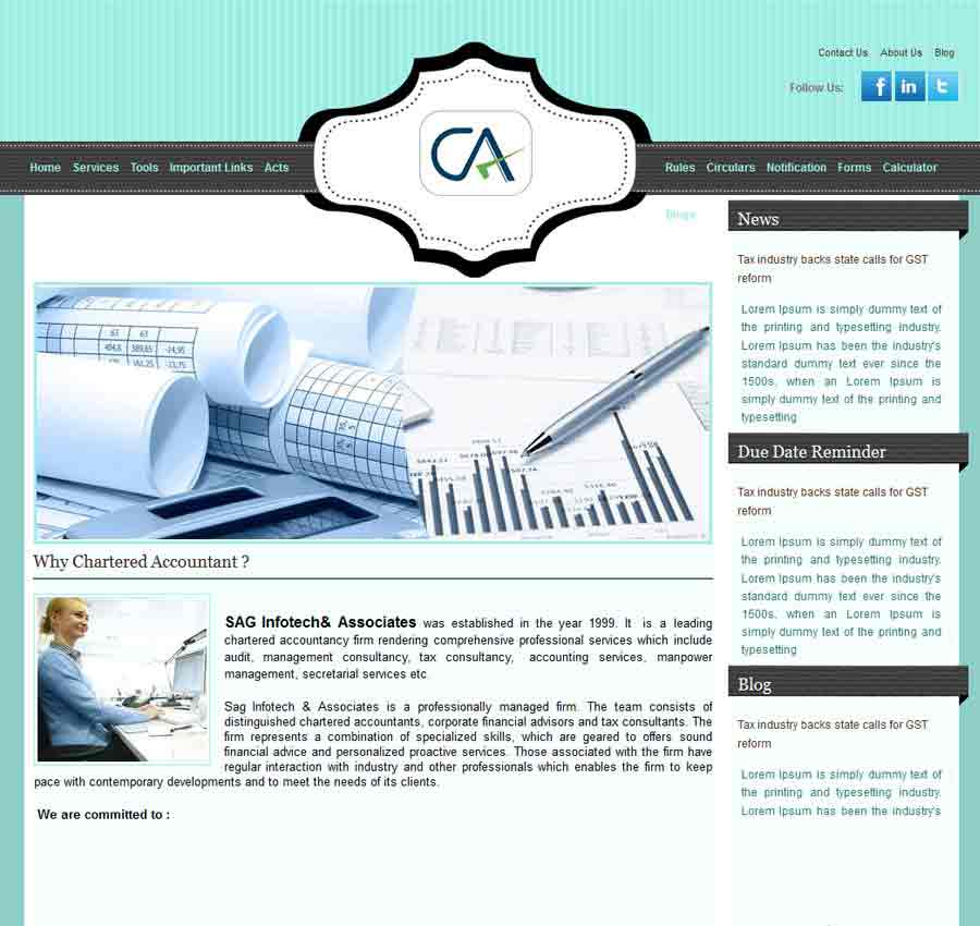 Chartered Accountant Theme27