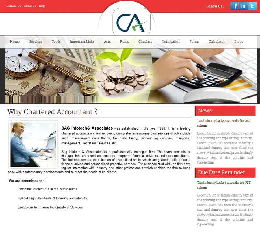Chartered Accountant Theme28