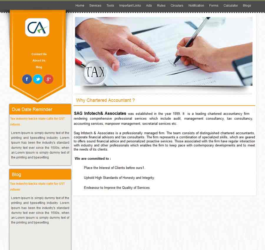 Chartered Accountant Theme29