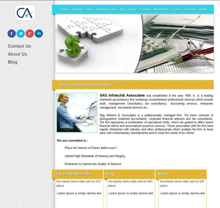 Chartered Accountant Theme32