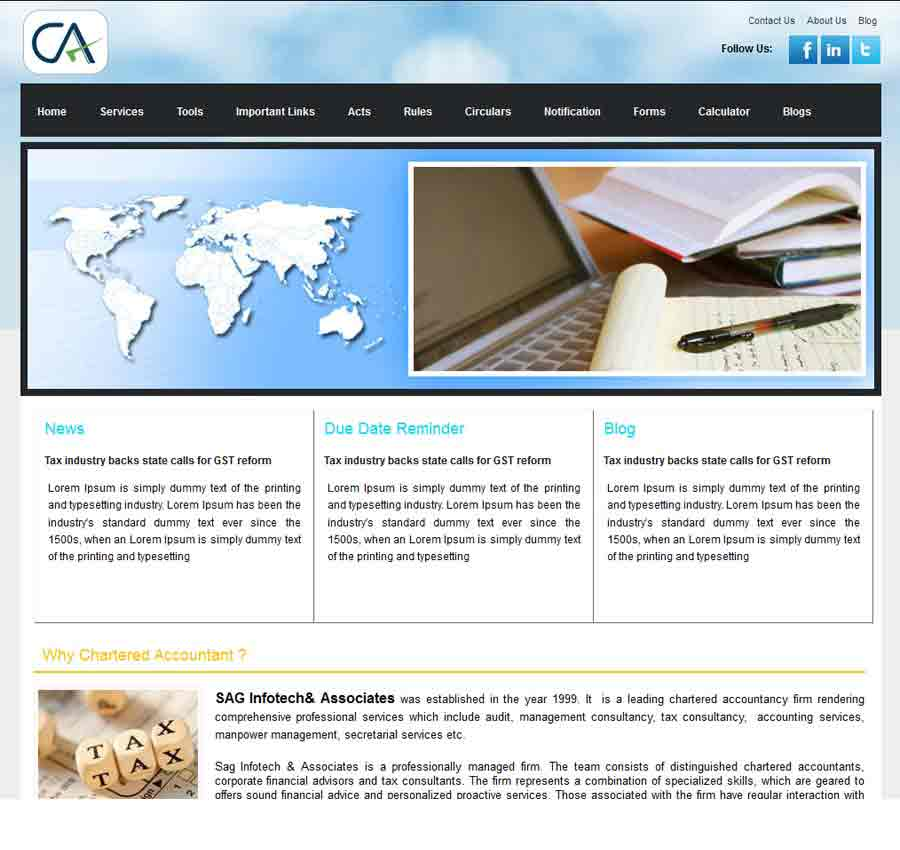 Chartered Accountant Theme35