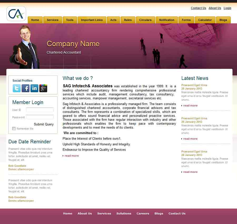 Chartered Accountant Theme37