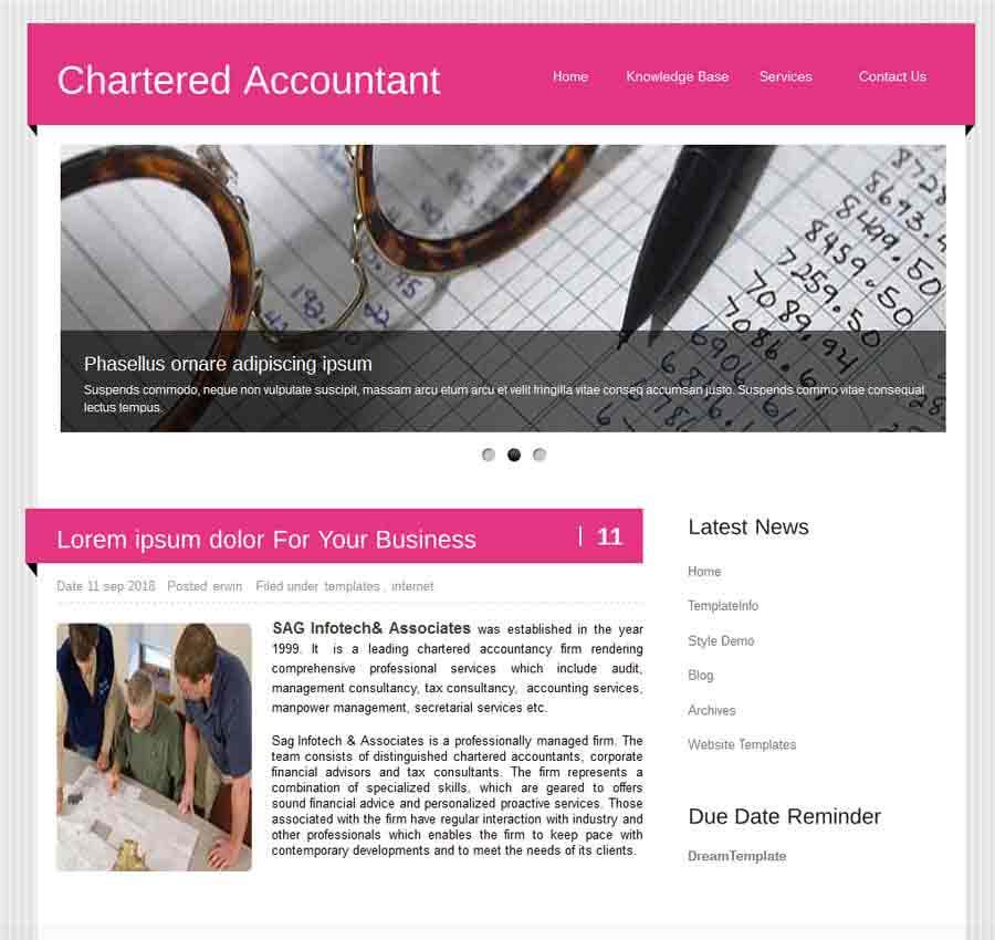 Chartered Accountant Theme41