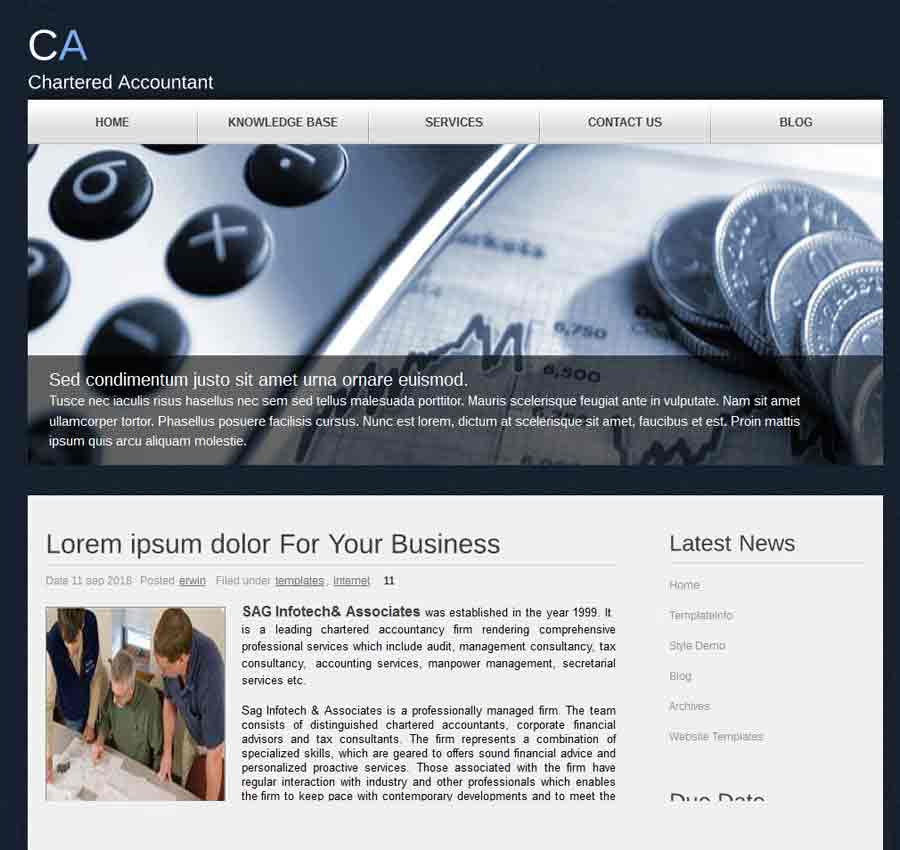 Chartered Accountant Theme42