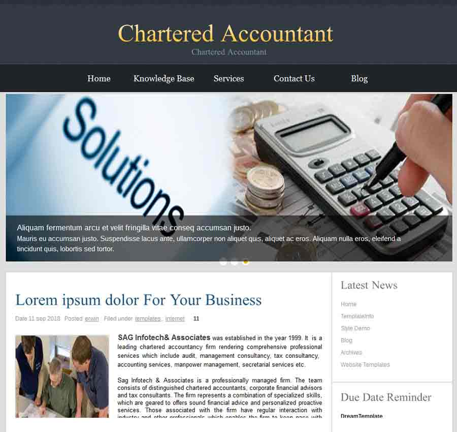 Chartered Accountant Theme43
