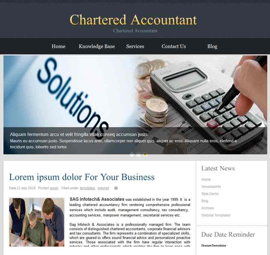 Chartered Accountant Theme43