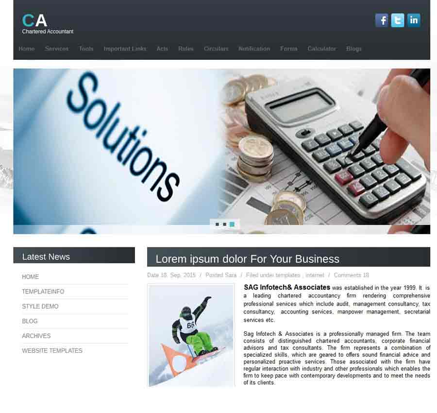 Chartered Accountant Theme44