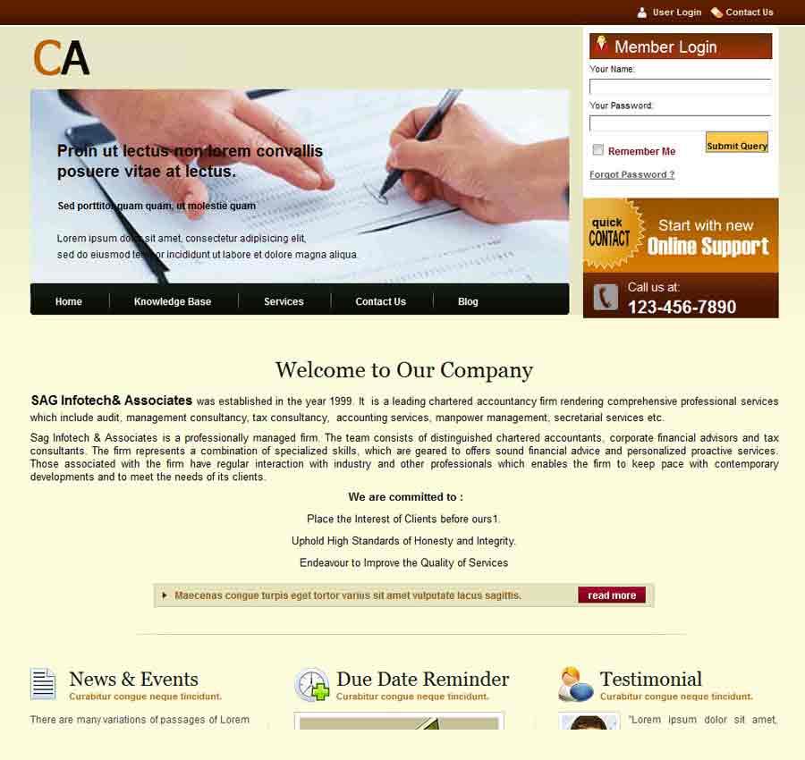 Chartered Accountant Theme49