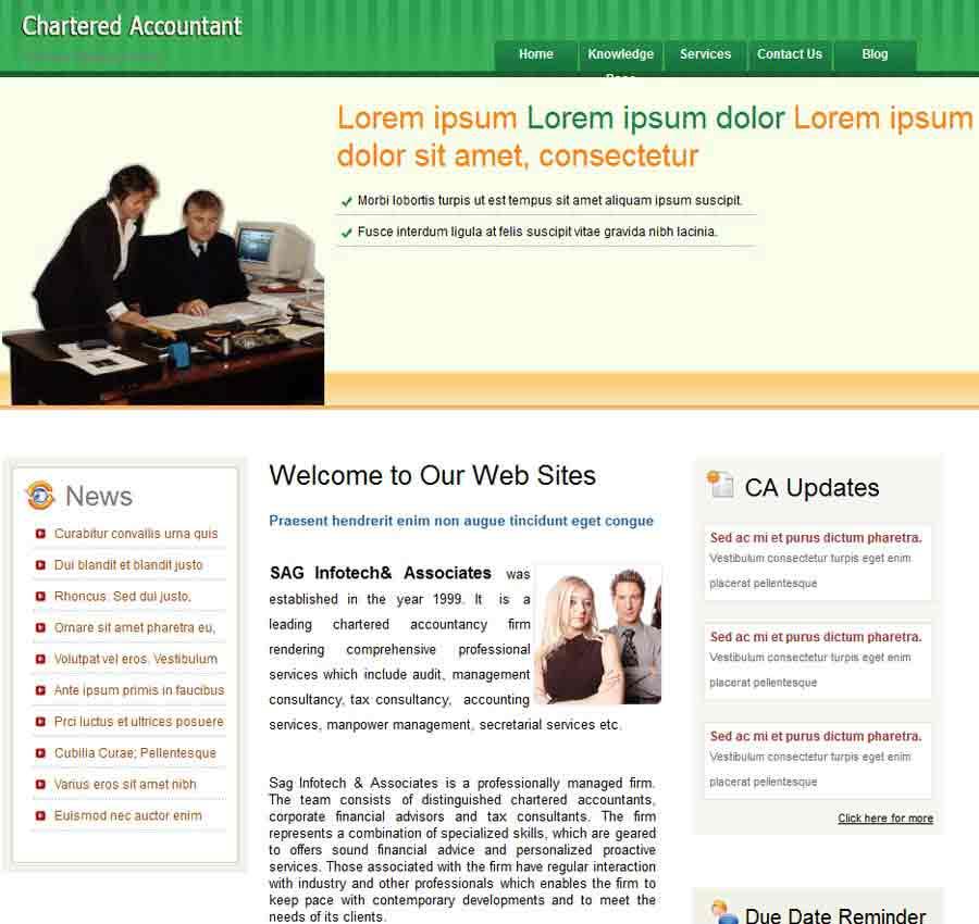 Chartered Accountant Theme50