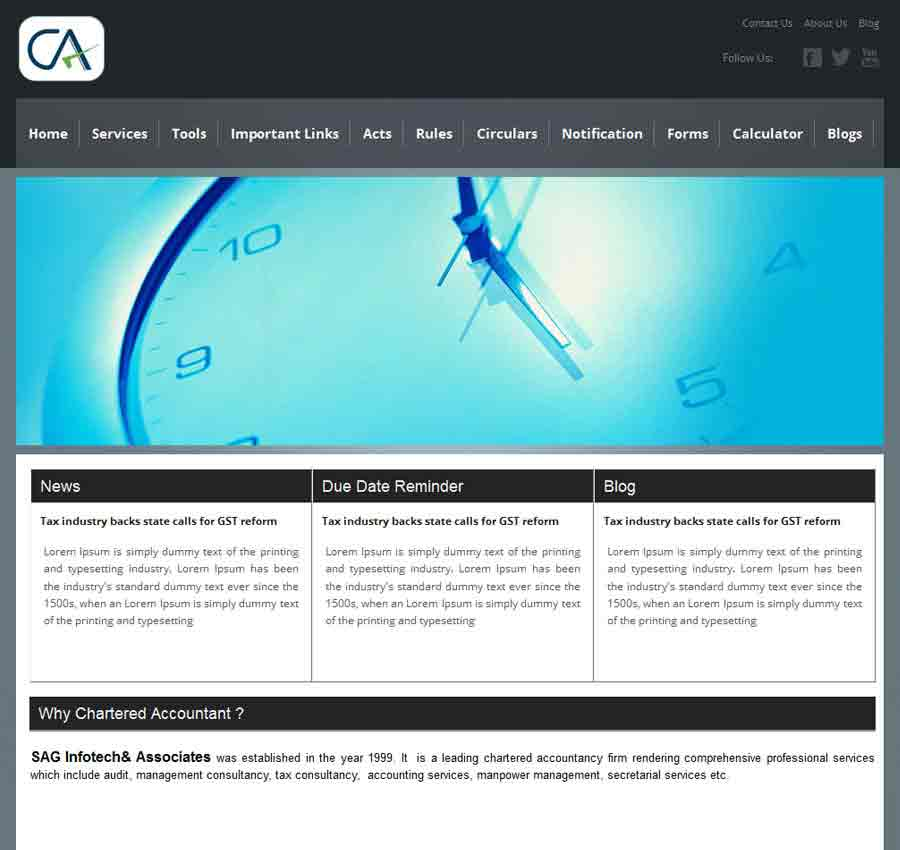 Chartered Accountant Theme57