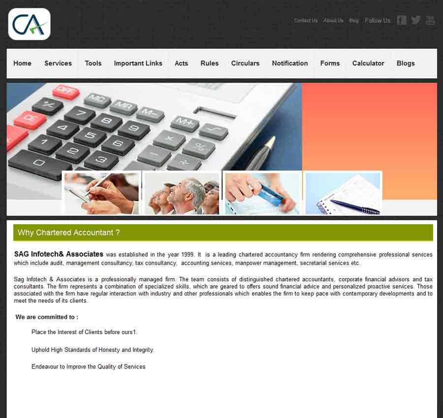 Chartered Accountant Theme58