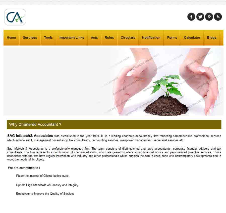 Chartered Accountant Theme59