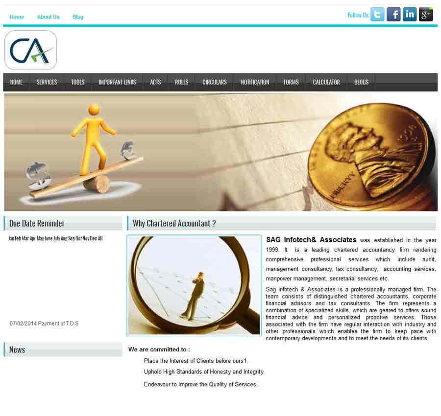 Chartered Accountant Theme55