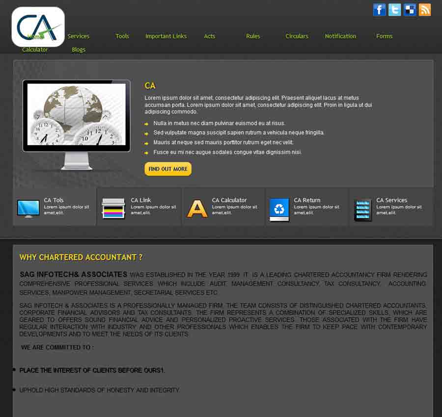 Chartered Accountant Theme39