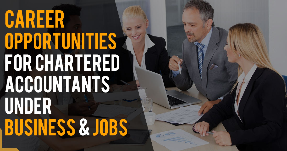 Career Opportunities For Chartered Accountants Under Business & Jobs