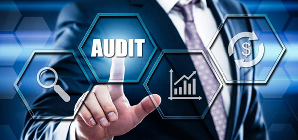 Audit Expertise Services