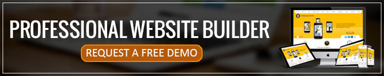 Professional Website Builder