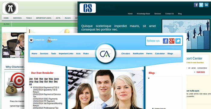 Professional Website Templates for CA, CS and Lawyers