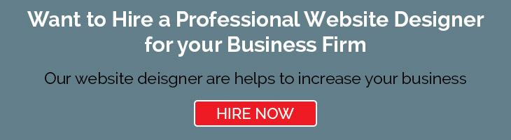 Hire Website Designer For Business