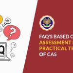 FAQ Practical Training' CA